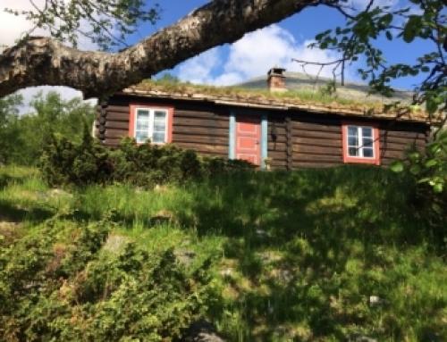 A garden lover's tour of Norway