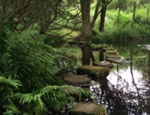 Gardens that evoke a sense of spirituality