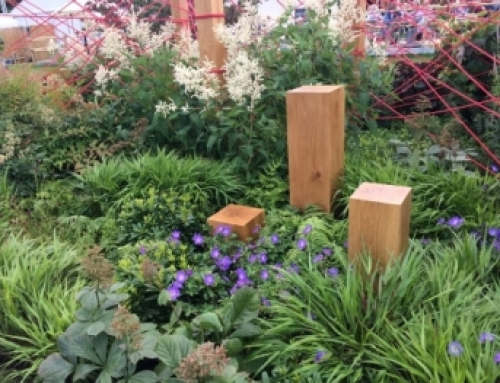 RHS Hampton Court – take aways